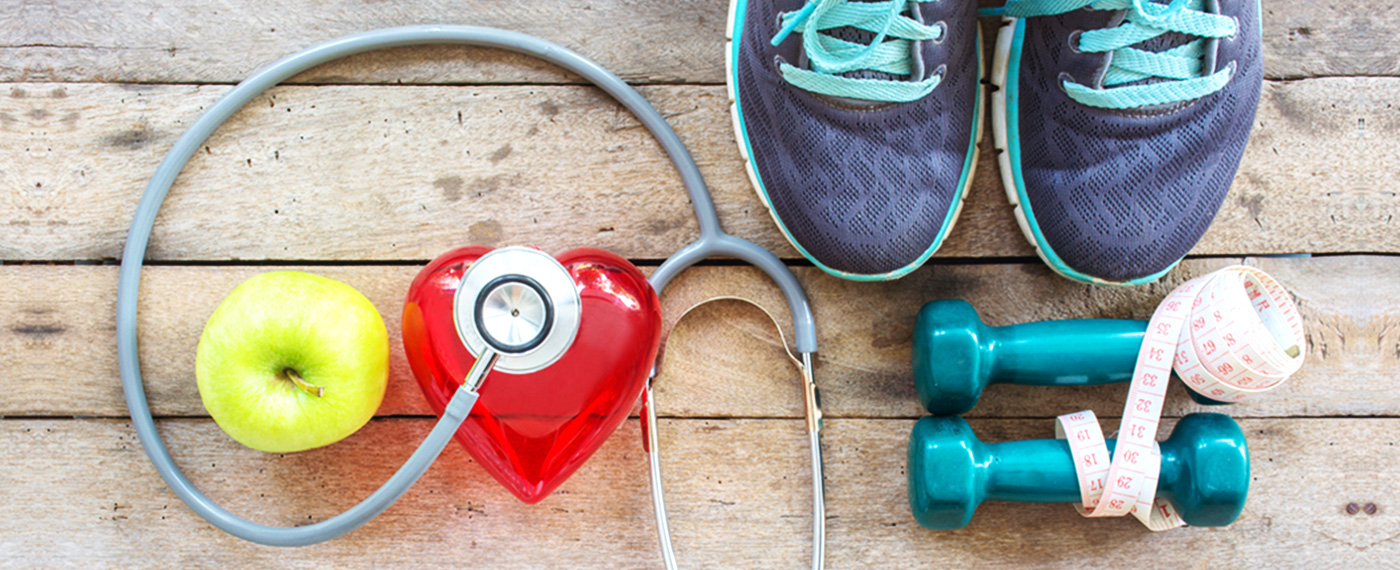 Sistema Cardiovascular Saudável